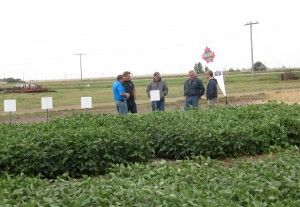 Some customers listening to an agronomic discussion at the annual Poker Plot Tour