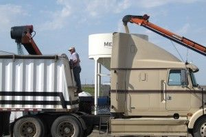 Treating soybeans